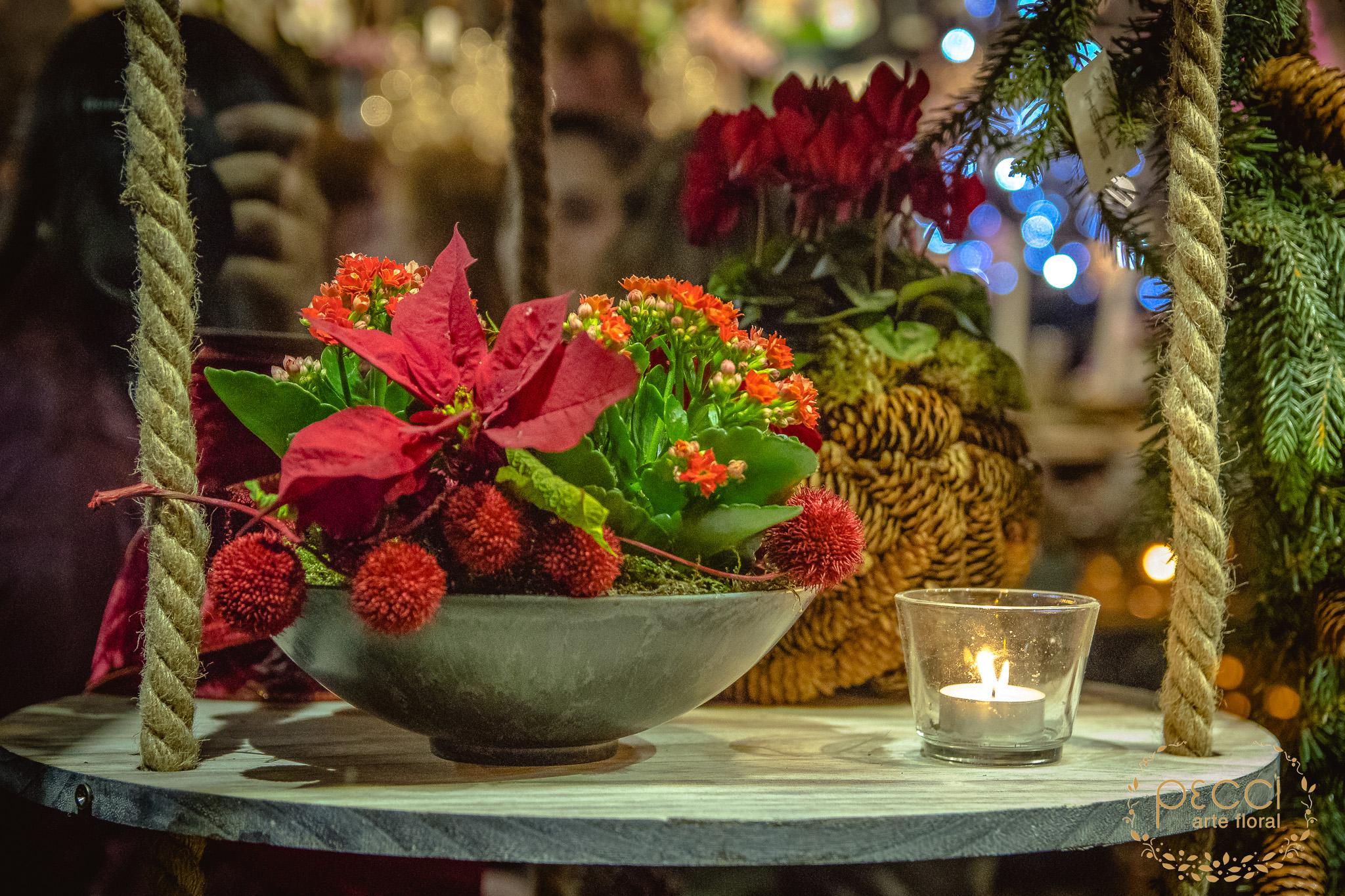 fiesta-navidad-pecci-2